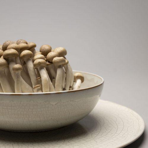 keramik-berlin-krakeleeservice-pilze-2
